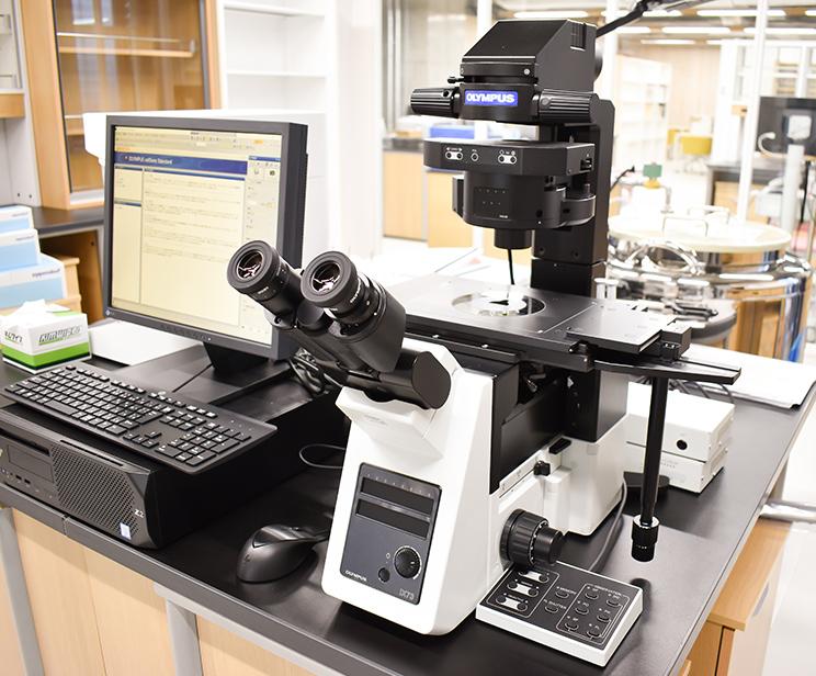 光学顕微鏡(倒立型)